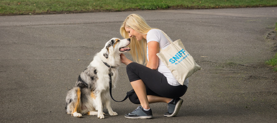 Dog Walker Jobs With SNIFF Orlando