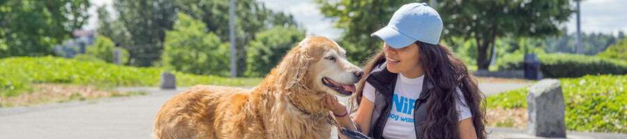Dog Walking App From SNIFF Orlando Dog Walkers